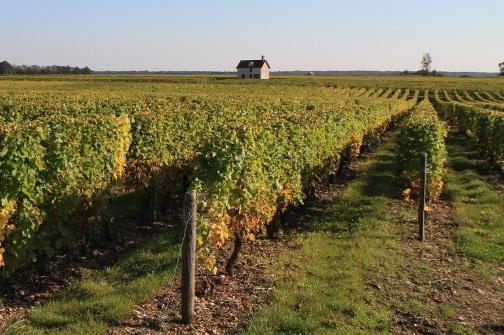 Loge de vigne à Lye
