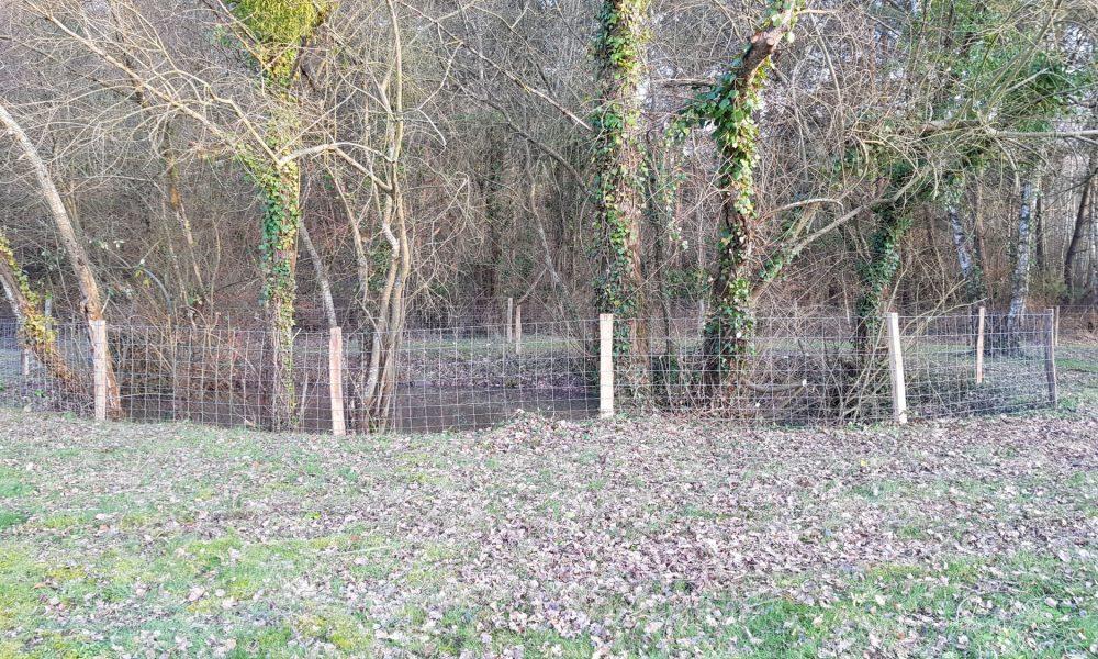 Plan d'eau No 2 à Chatillon sur Cher